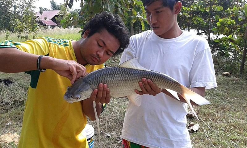 บ่อตกปลา หนองบัวลำภู